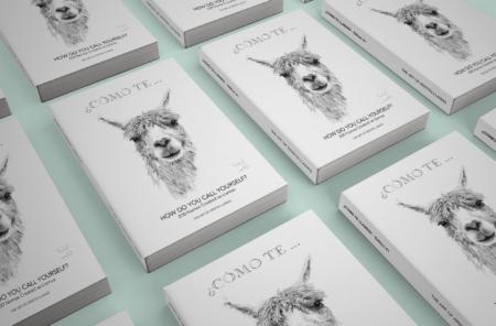 llama art book by kristin llamas