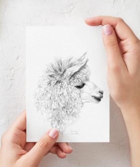 llama drawing print