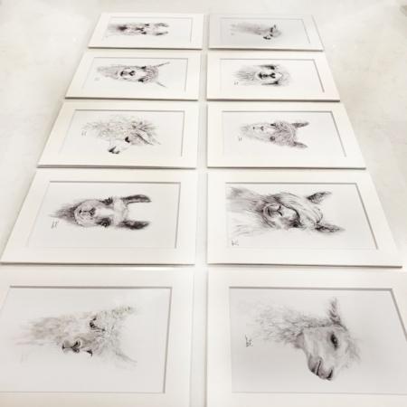 llama art prints